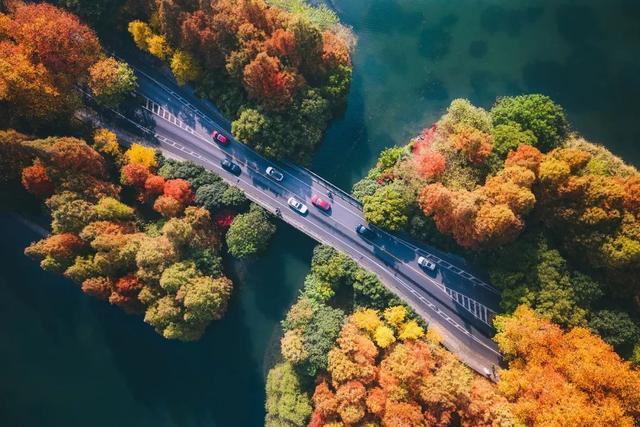 杭州秋天必游的五条线路推荐,去了很多地方还是忘不了这里