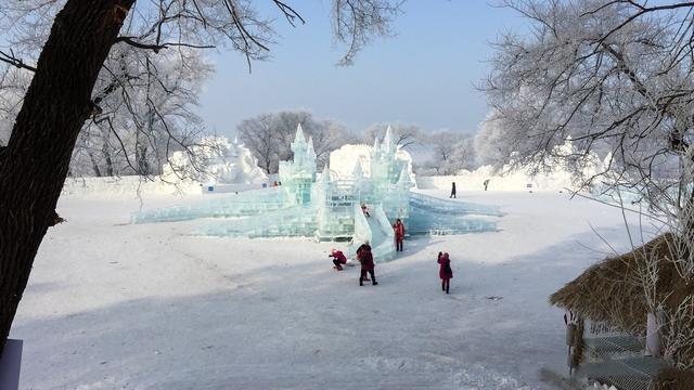 冬季限定的梦幻景观雾凇,很多南方小伙伴都没见过
