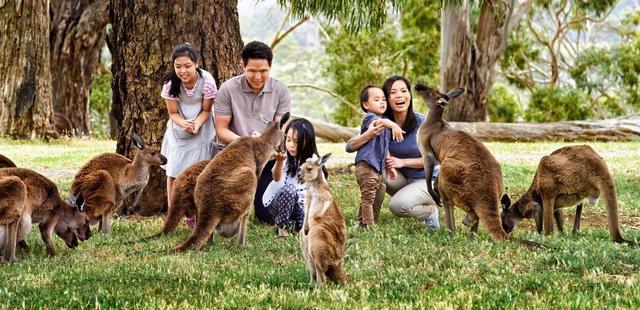 春节带家人去旅行,5-20天假期都适合的目的地