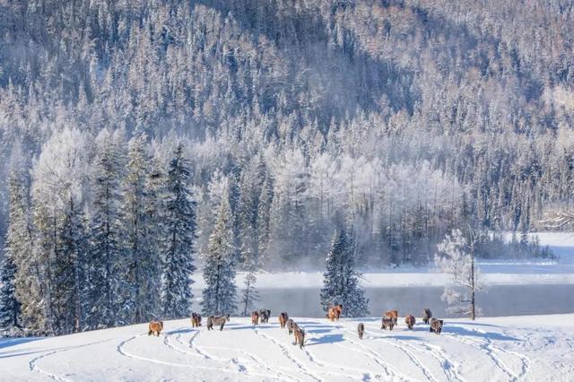 冬天去旅行,一定不能错过这几个地方,错过又要等一年