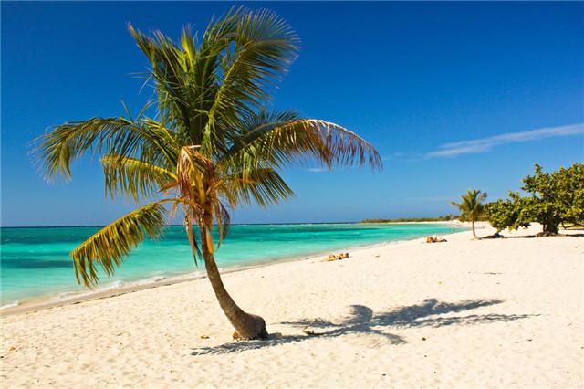 出国旅游,你最喜欢最想要去哪个国家?