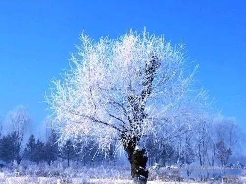 冬季旅游必看,感受一下有暖气的北方人有多嚣张