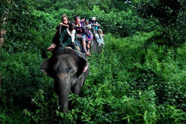 泰国跟团游被导游讽刺舍不得花钱,你怎么看