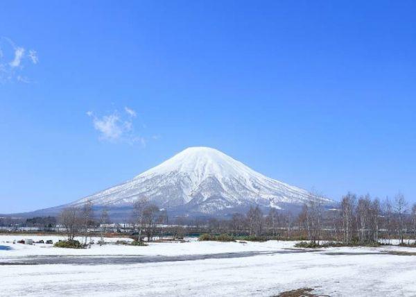 日本的神秘岛:2020春季参观北海道的7个秘诀