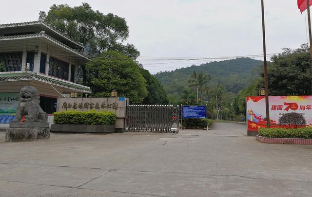 """闹市中的""""世外桃源"""",桂林原生态国家森林公园,而且免费游览"""