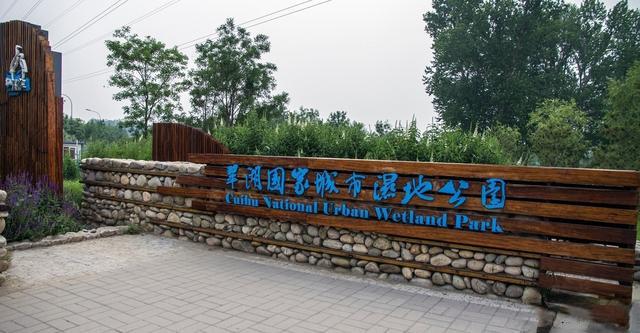 北京唯一国家级城市湿地公园-翠湖湿地公园,公交直达还免费