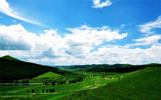 你来过草原旅游吗?你对草原的第一印象是什么?