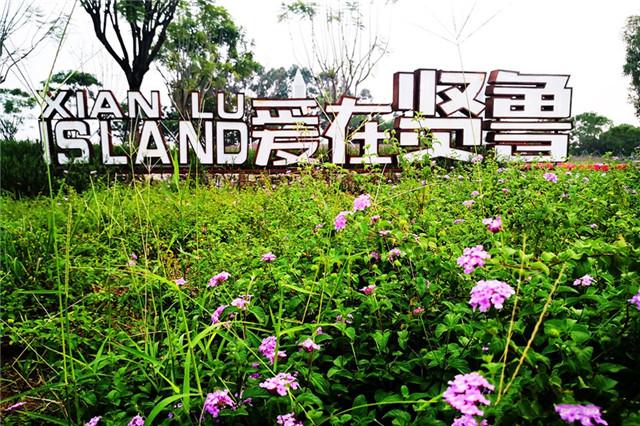 广州佛山贤鲁岛有什么好玩?贤鲁岛一日游攻略