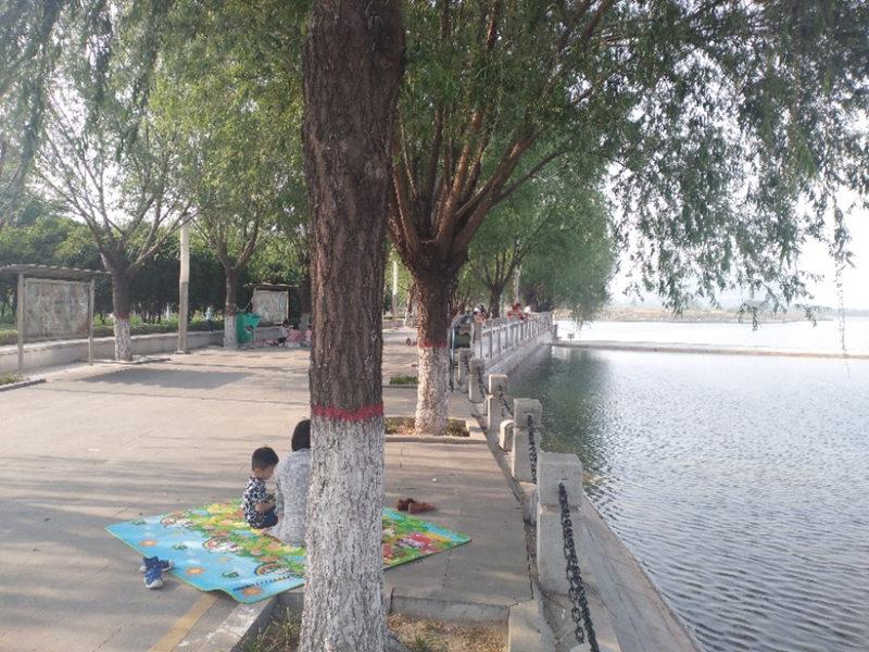 郑州郊区公园,依湖而建,适合野钓野炊免门票(郑州滨河公园怎么样)