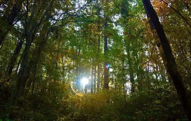 西安到黄柏塬旅游攻略,欣赏最美的秦岭秋景