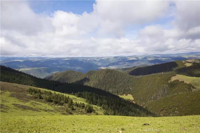 卓西牧场旅游攻略 去领略独特的川西风景(卓西牧场在哪里)